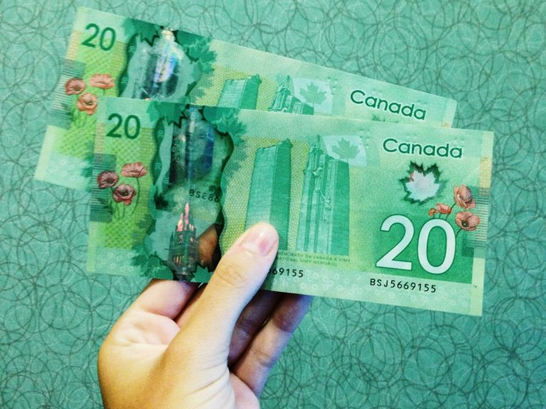 a hand holding canadian money